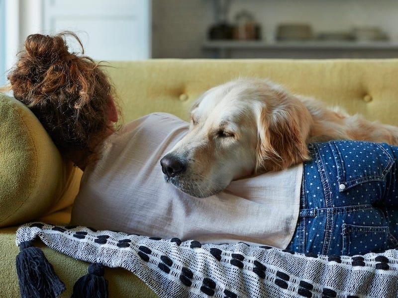 A woman and a dog sleeping on a couch.